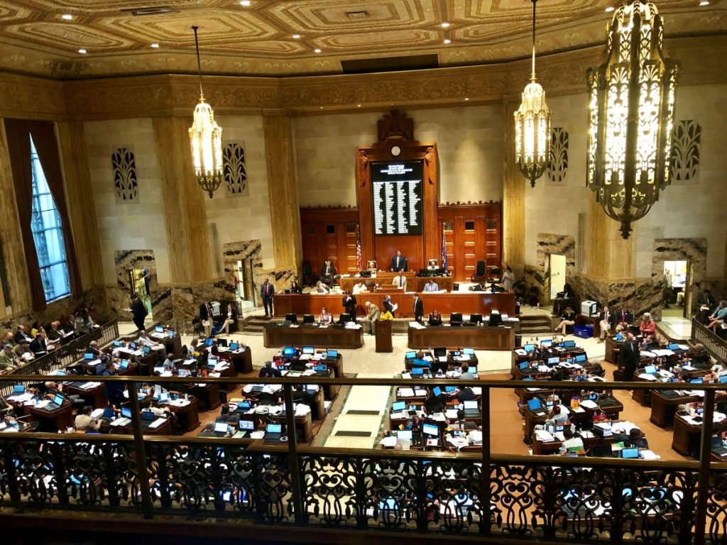 Legislature photo taken from balcony of Louisiana House of Representatives in Special Session