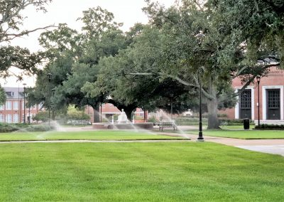 The Lady and sprinklers